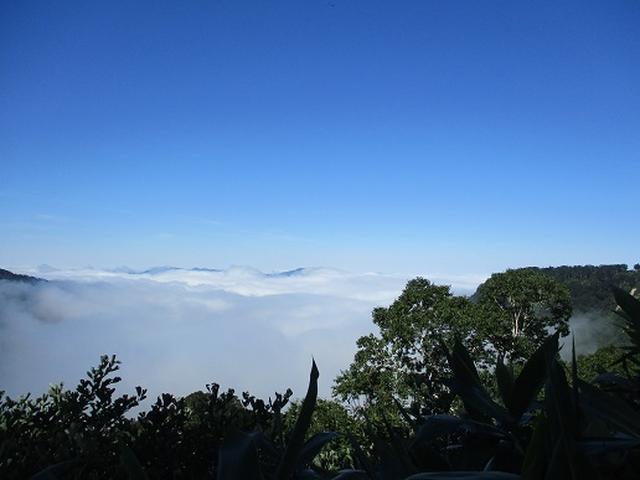 画像10: 【山旅会・登山ガイドこだわりツアー】岡田ガイドからの便り・白山ツアーにいってまいりました!(その3)