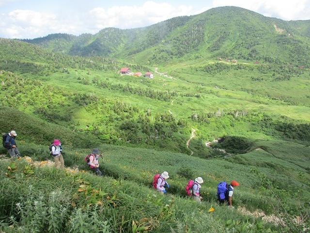 画像6: 【山旅会・登山ガイドこだわりツアー】岡田ガイドからの便り・白山ツアーにいってまいりました!(その3)