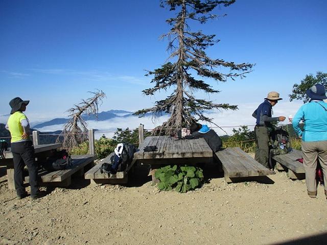 画像9: 【山旅会・登山ガイドこだわりツアー】岡田ガイドからの便り・白山ツアーにいってまいりました!(その3)