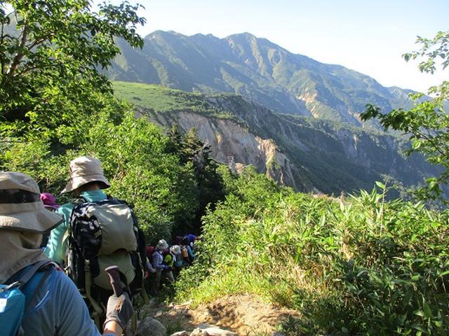 画像8: 【山旅会・登山ガイドこだわりツアー】岡田ガイドからの便り・白山ツアーにいってまいりました!(その3)