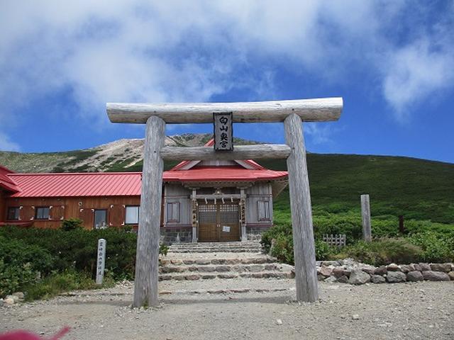 画像2: 【山旅会・登山ガイドこだわりツアー】岡田ガイドからの便り・白山ツアーにいってまいりました!(その3)