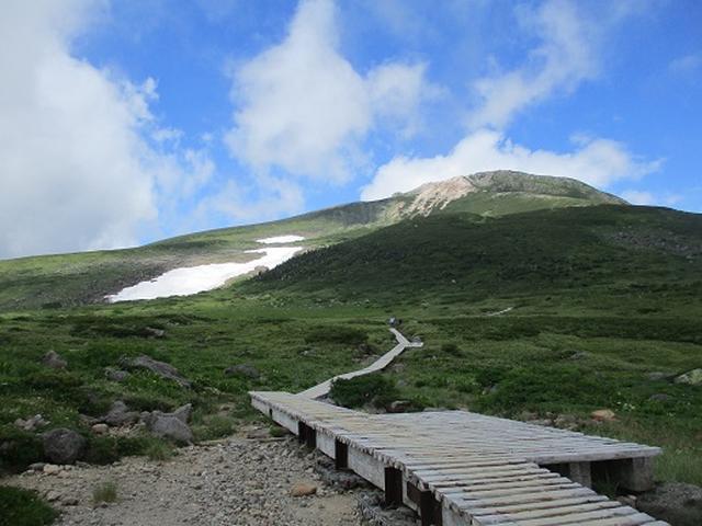 画像4: 【山旅会・登山ガイドこだわりツアー】岡田ガイドからの便り・白山ツアーにいってまいりました!(その3)