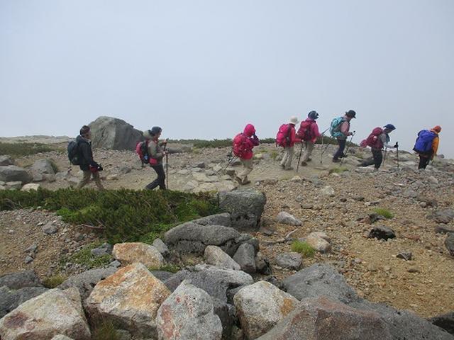 画像1: 【山旅会・登山ガイドこだわりツアー】岡田ガイドからの便り・白山ツアーにいってまいりました!(その3)
