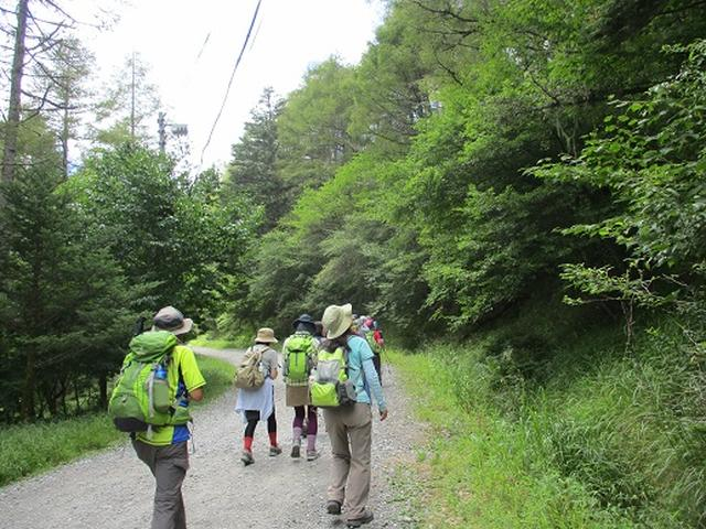 画像10: 【山旅会・登山ガイドこだわりツアー】添乗員からの便り・入笠山ツアーにいってまいりました!(その1)