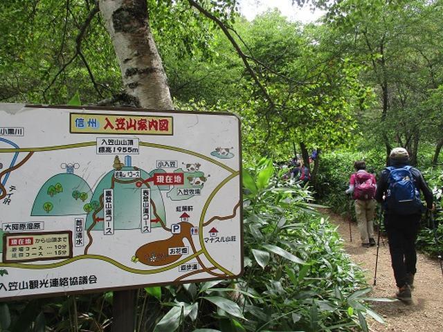 画像1: 【山旅会・登山ガイドこだわりツアー】添乗員からの便り・入笠山ツアーにいってまいりました!(その2)