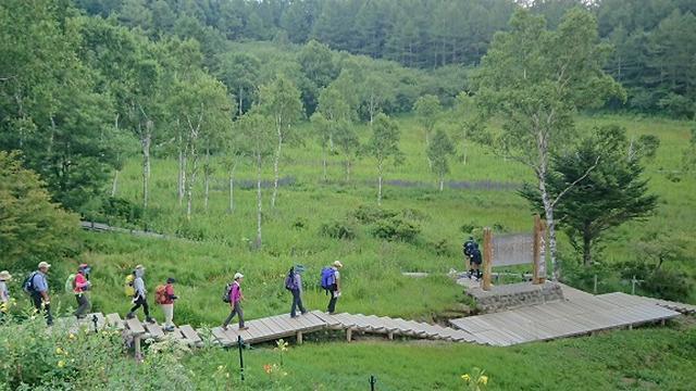 画像8: 【山旅会・登山ガイドこだわりツアー】添乗員からの便り・入笠山ツアーにいってまいりました!(その2)