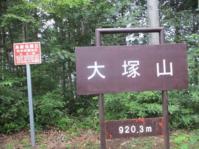 画像11: 【山旅会・登山ガイドこだわりツアー】添乗員からの便り・大塚山にいってまいりました!(その1)