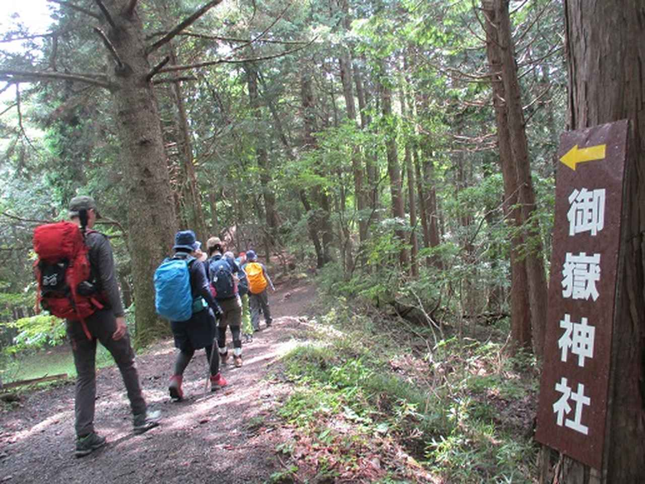 画像4: 【山旅会・登山ガイドこだわりツアー】添乗員からの便り・大塚山にいってまいりました!(その2)
