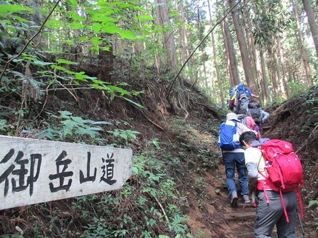 画像3: 【山旅会・登山ガイドこだわりツアー】添乗員からの便り・大塚山にいってまいりました!(その1)