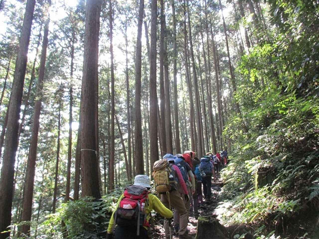 画像2: 【山旅会・登山ガイドこだわりツアー】添乗員からの便り・大塚山にいってまいりました!(その1)