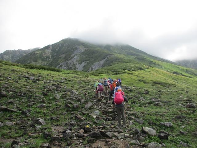 画像4: 【山旅会・登山ガイドこだわりツアー】岡田ガイドからの便り・立山の別山にいってまいりました!(その2)