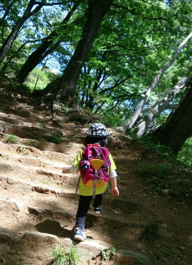 画像: 4歳児の登山風景。 奥武蔵・多峯主山に登りました。 標高差約100m・約1時間の登りは、ほぼコースタイムどおりで自分の足で歩けましたが、下りは疲れてしまい背負って下山しました。 4歳とは言え15㎏以上の子どもを背負っての下山と、お隣の天覧山への登り返しは、けっこうきつかった記憶があります。