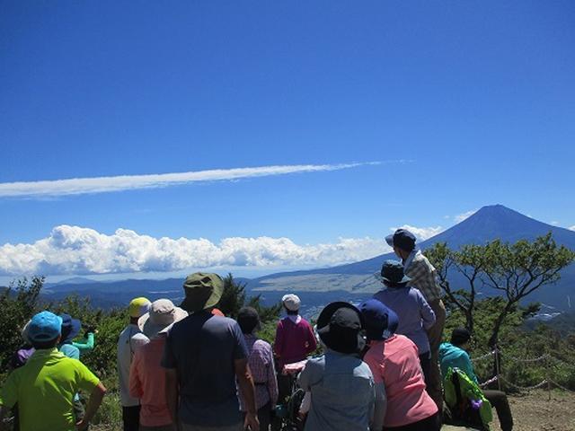 画像7: 【山旅会・登山ガイドこだわりツアー】添乗員からの便り・三つ峠にいってまいりました!(その2)