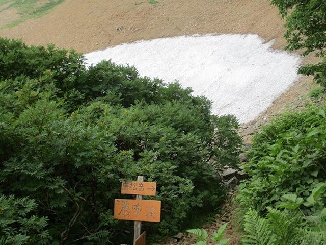 画像5: 【山旅会・登山ガイドこだわりツアー】添乗員からの便り・唐松岳ツアーにいってまいりました!(その3)