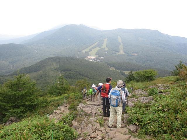 画像13: 【山旅会・登山ガイドこだわりツアー】岡田ガイドからの便り・湯の丸山ツアーにいってまいりました!