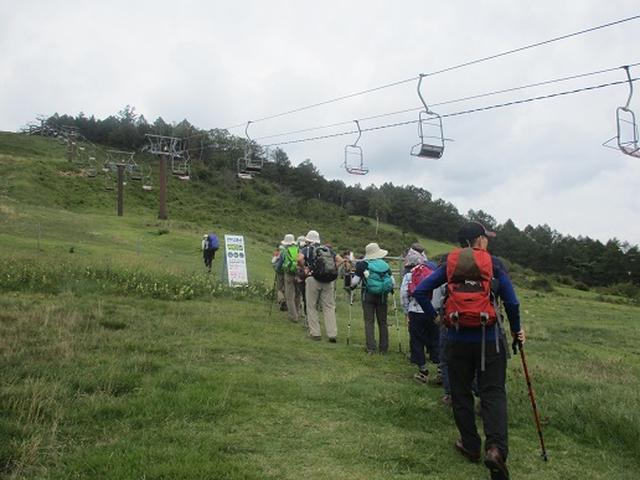 画像1: 【山旅会・登山ガイドこだわりツアー】岡田ガイドからの便り・湯の丸山ツアーにいってまいりました!
