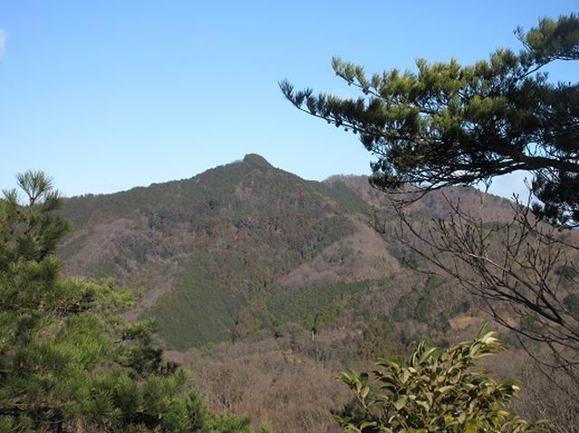 画像5: 【山旅会・登山ガイドこだわりツアー】岡田ガイドからの便り・足利行道山ツアーのご案内