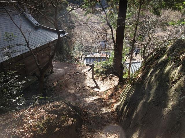 画像11: 【山旅会・登山ガイドこだわりツアー】岡田ガイドからの便り・足利行道山ツアーのご案内