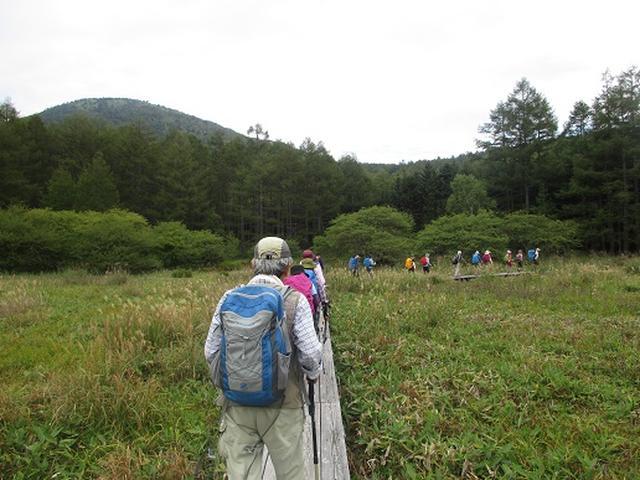 画像14: 【山旅会・登山ガイドこだわりツアー】岡田ガイドからの便り・湯の丸山ツアーにいってまいりました!