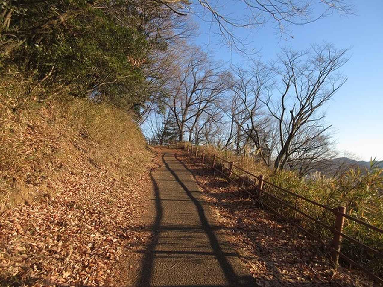 画像1: 【山旅会・登山ガイドこだわりツアー】岡田ガイドからの便り・足利行道山ツアーのご案内