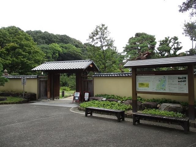 画像14: 【山旅会・登山ガイドこだわりツアー】岡田ガイドからの便り・都内の山の下見にいってまいりました!