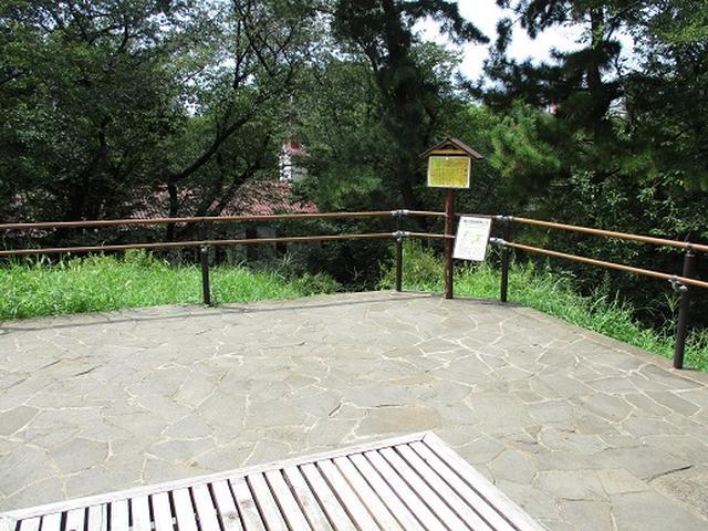 画像7: 【山旅会・登山ガイドこだわりツアー】岡田ガイドからの便り・都内の山の下見にいってまいりました!