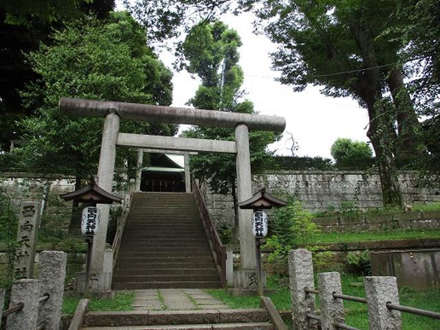 画像2: 【山旅会・登山ガイドこだわりツアー】岡田ガイドからの便り・都内の山の下見にいってまいりました!
