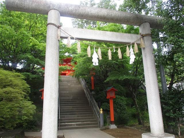 画像9: 【山旅会・登山ガイドこだわりツアー】岡田ガイドからの便り・都内の山の下見にいってまいりました!