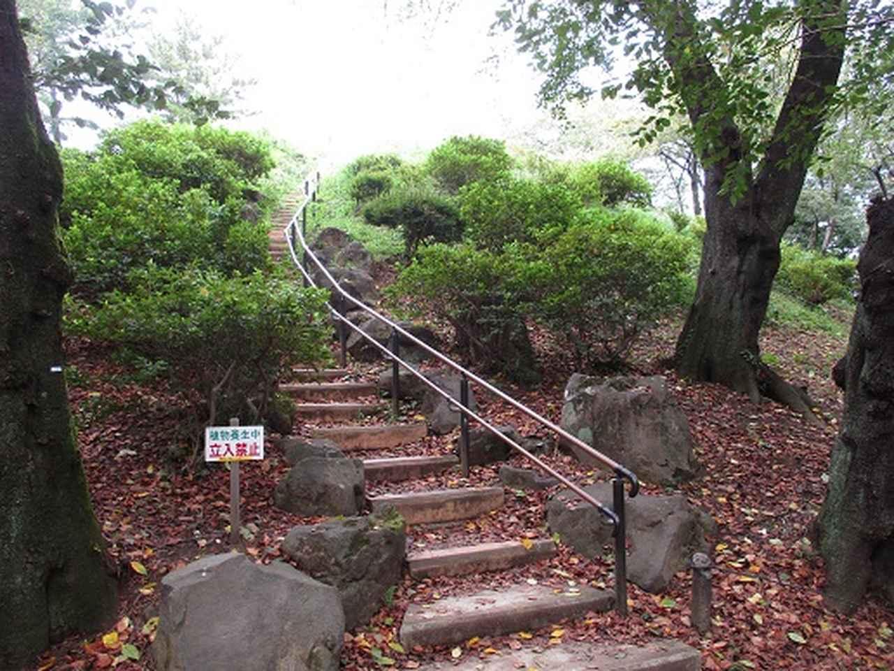 画像6: 【山旅会・登山ガイドこだわりツアー】岡田ガイドからの便り・都内の山の下見にいってまいりました!