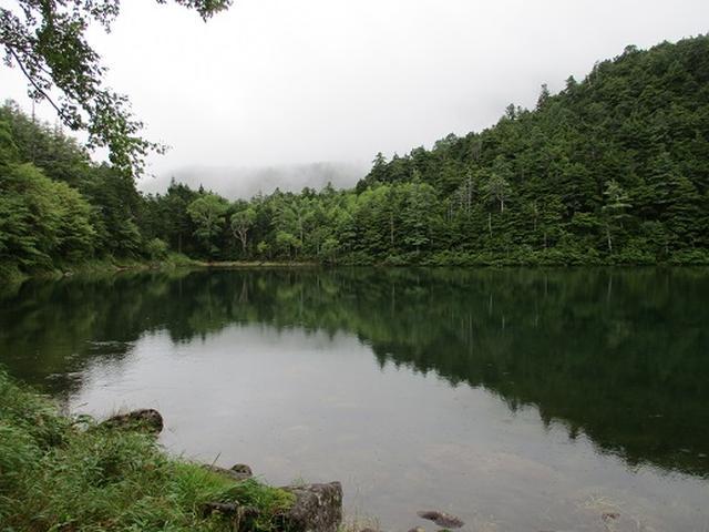 画像8: 【山旅会・登山ガイドこだわりツアー】岡田ガイドからの便り・双子池から亀甲池ツアーの下見にいってまいりました!