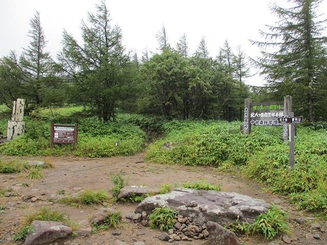 画像1: 【山旅会・登山ガイドこだわりツアー】岡田ガイドからの便り・双子池から亀甲池ツアーの下見にいってまいりました!