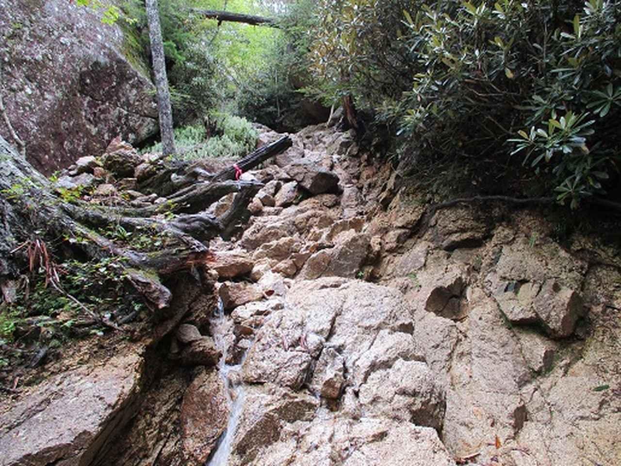 画像7: 【山旅会・登山ガイドこだわりツアー】岡田ガイドからの便り・瑞牆山に下見にいってまいりました!