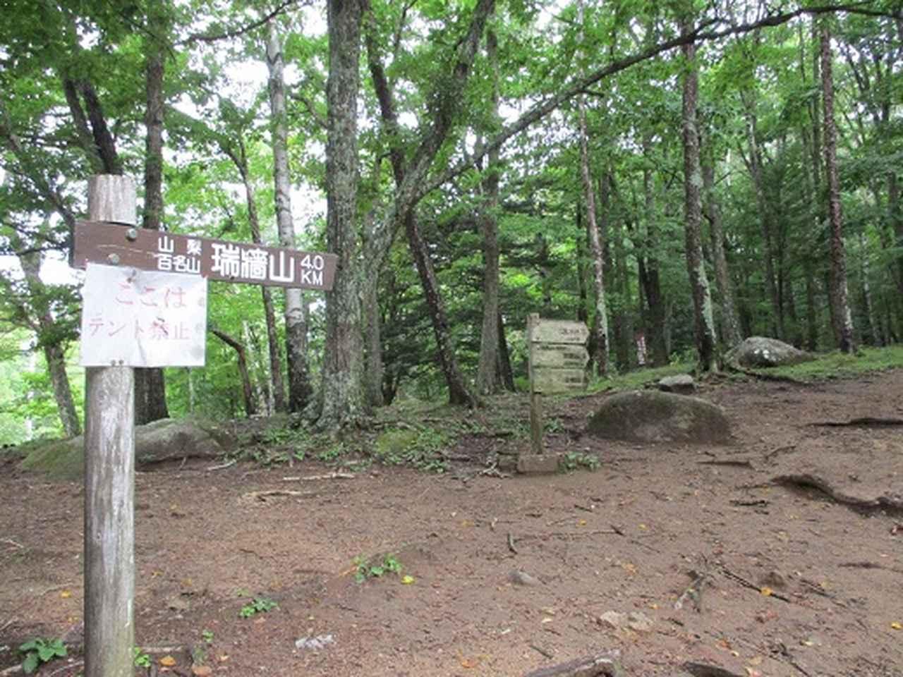 画像2: 【山旅会・登山ガイドこだわりツアー】岡田ガイドからの便り・瑞牆山に下見にいってまいりました!