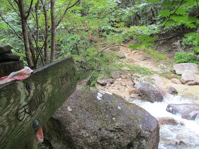 画像5: 【山旅会・登山ガイドこだわりツアー】岡田ガイドからの便り・瑞牆山に下見にいってまいりました!