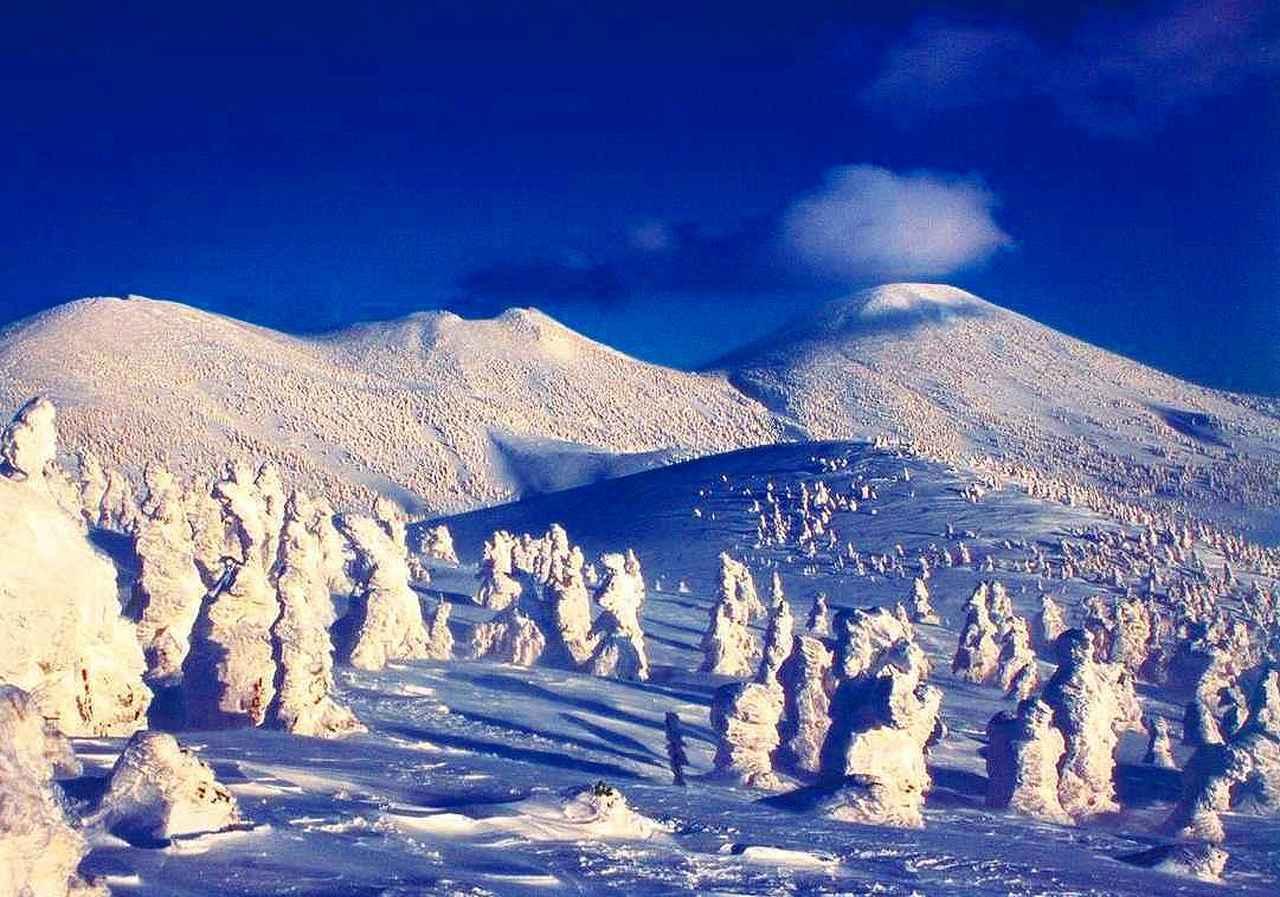画像: ■樹氷(写真は八甲田山)