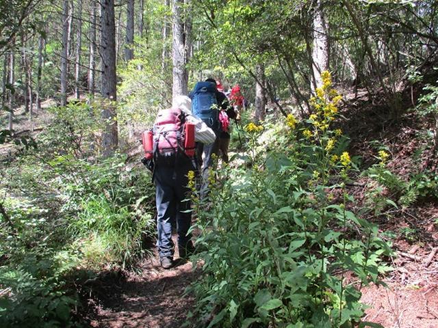 画像2: 【山旅会・登山ガイドこだわりツアー】岡田ガイドからの便り・浅間隠山ツアーにいってまいりました!