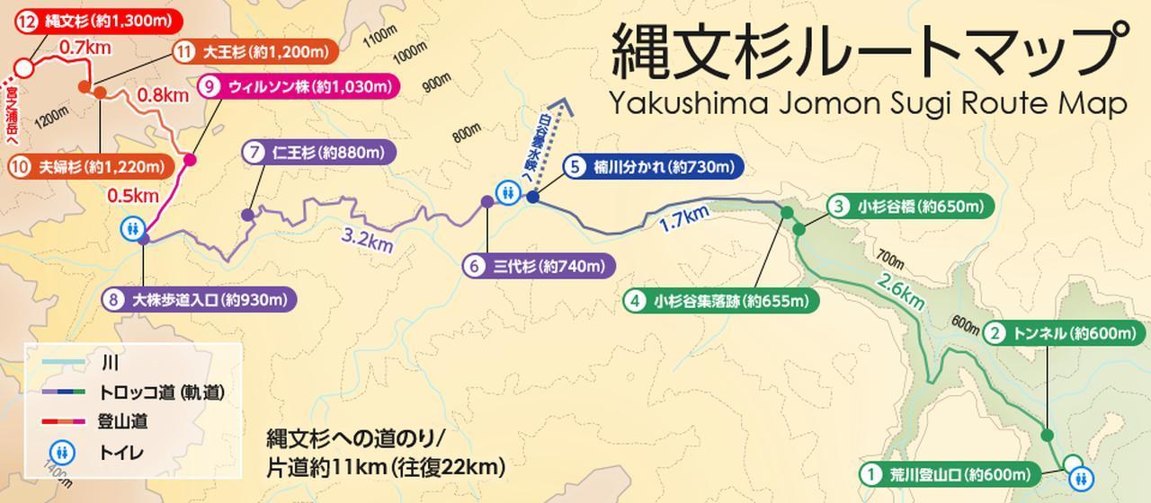 画像: 縄文杉ルートマップ