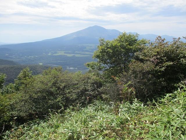 画像7: 【山旅会・登山ガイドこだわりツアー】岡田ガイドからの便り・浅間隠山ツアーにいってまいりました!
