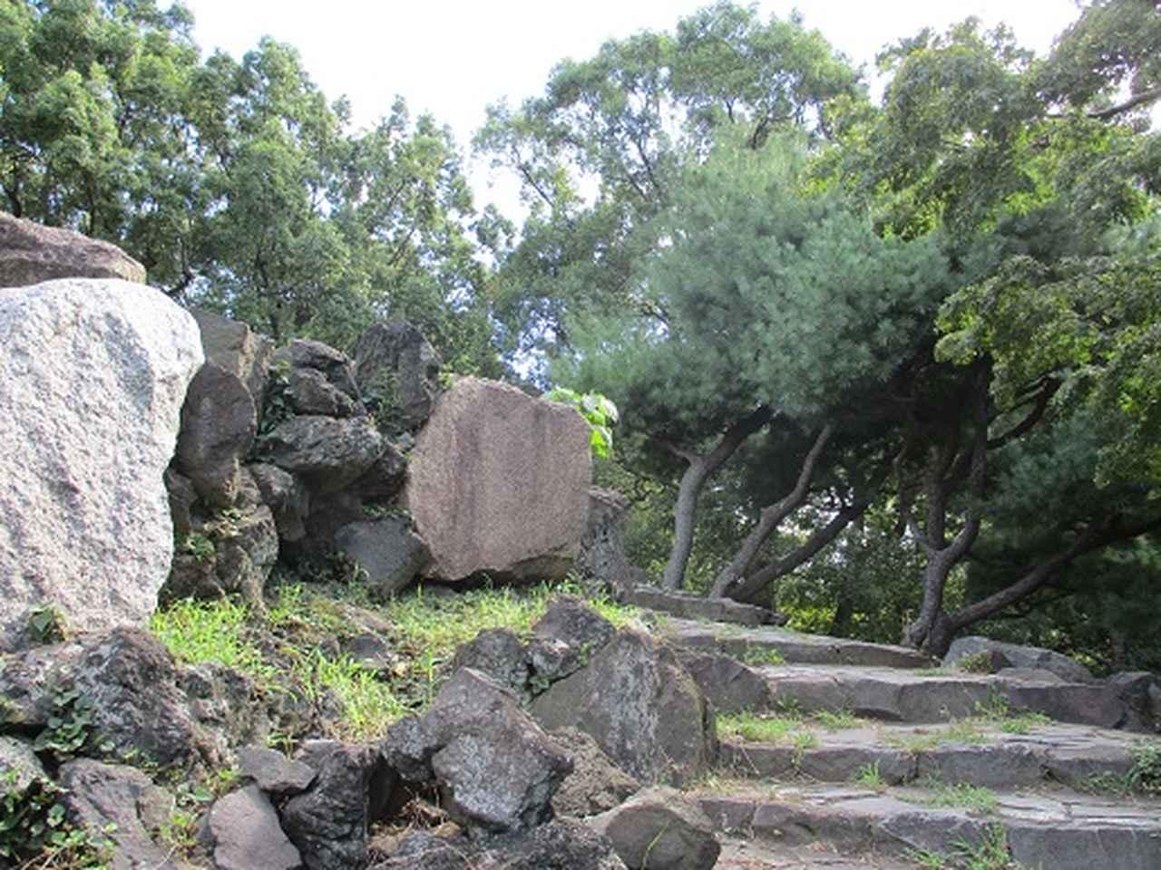 画像2: 【山旅会・登山ガイドこだわりツアー】岡田ガイドからの便り・都内の山を下見してまいりました!