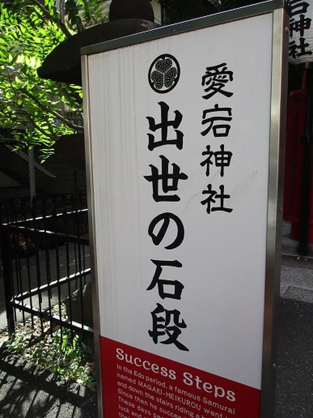 画像5: 【山旅会・登山ガイドこだわりツアー】岡田ガイドからの便り・都内の山を下見してまいりました!