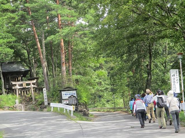 画像5: 【山旅会・登山ガイドこだわりツアー】岡田ガイドからの便り・双子池から亀甲池ツアーにいってまいりました!