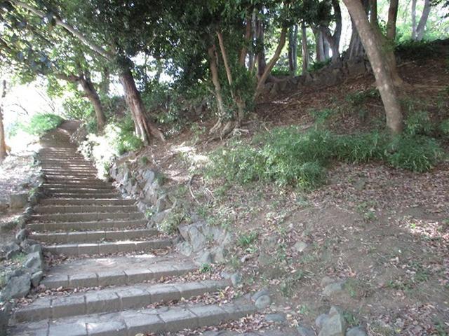 画像10: 【山旅会・登山ガイドこだわりツアー】岡田ガイドからの便り・都内の山を下見してまいりました!