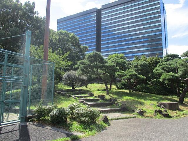 画像1: 【山旅会・登山ガイドこだわりツアー】岡田ガイドからの便り・都内の山を下見してまいりました!