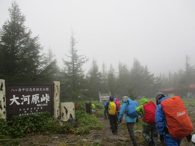 画像1: 【山旅会・登山ガイドこだわりツアー】岡田ガイドからの便り・双子池から亀甲池ツアーにいってまいりました!