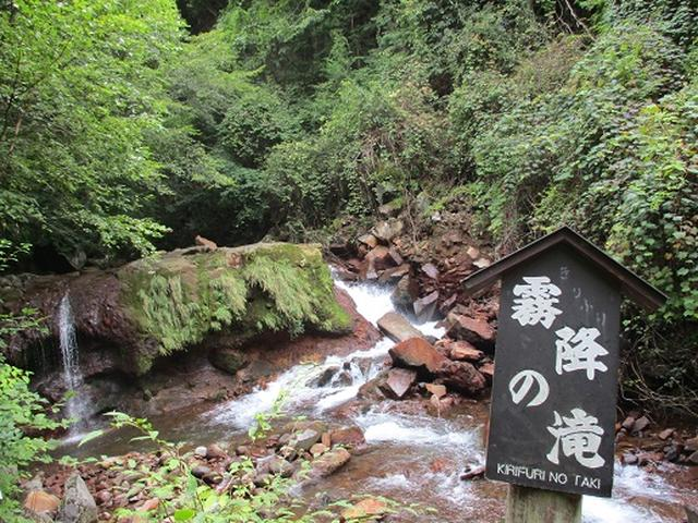 画像9: 【山旅会・登山ガイドこだわりツアー】岡田ガイドからの便り・双子池から亀甲池ツアーにいってまいりました!