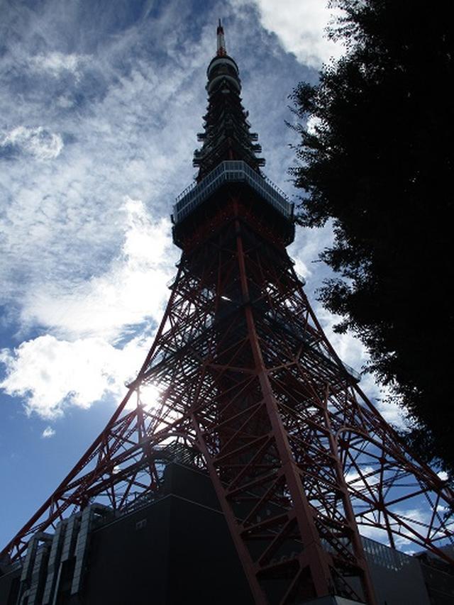 画像8: 【山旅会・登山ガイドこだわりツアー】岡田ガイドからの便り・都内の山を下見してまいりました!