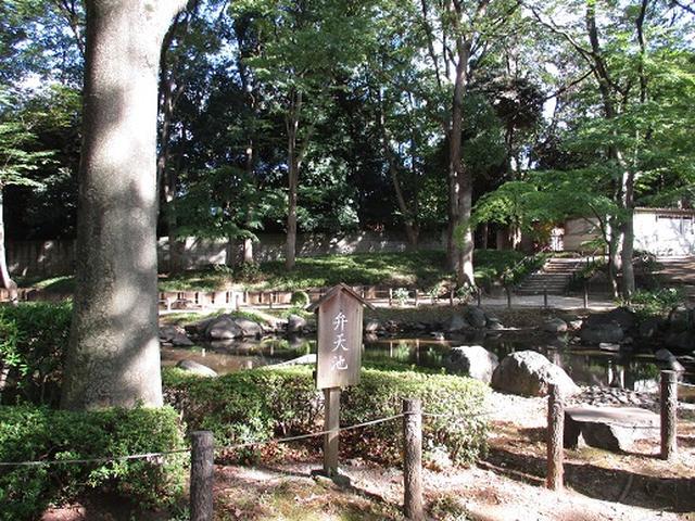 画像9: 【山旅会・登山ガイドこだわりツアー】岡田ガイドからの便り・都内の山を下見してまいりました!