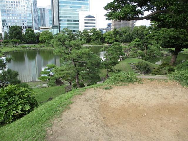 画像14: 【山旅会・登山ガイドこだわりツアー】岡田ガイドからの便り・都内の山を下見してまいりました!