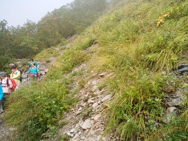 画像10: 【山旅会・登山ガイドこだわりツアー】岡田ガイドからの便り・唐松岳ツアーの2回目にいってまいりました!(その2)