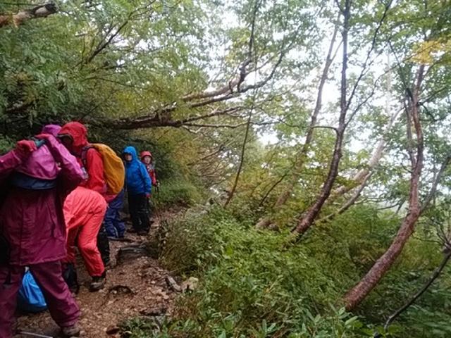画像7: 【山旅会・登山ガイドこだわりツアー】岡田ガイドからの便り・唐松岳ツアーの2回目にいってまいりました!(その1)